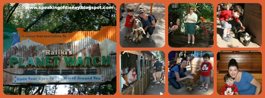 Review Of Rafikis Planet Watch And Other Walking Trails At Animal Kingdom