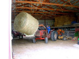 storing round bales in the barn 1