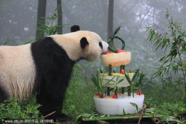 Поздравление с днем рождения в китае