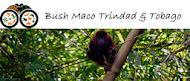 Bush Maco Trinidad & Tobago