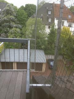 Bochum Katzennetz Terrasse