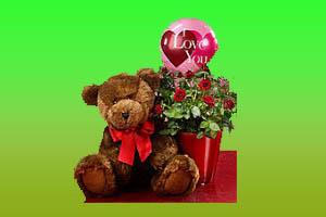 mawar_valentine50802