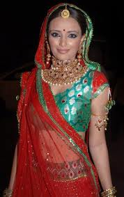 Roshni chopra hot in saree images 4