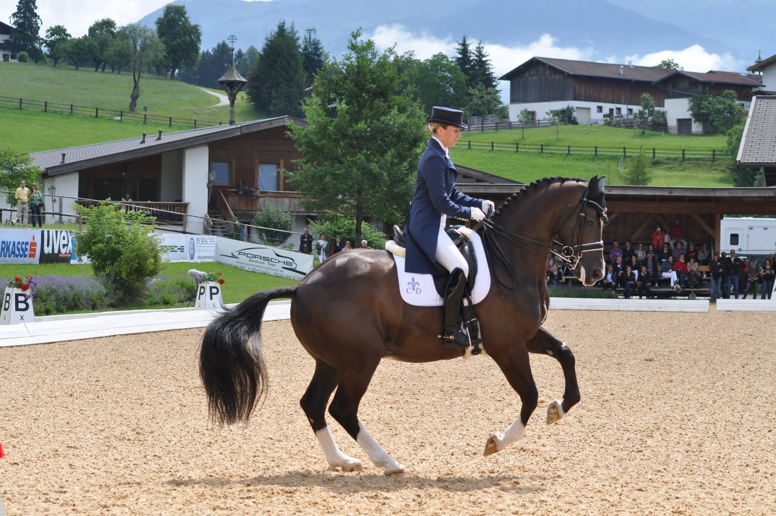Supreme products supreme products sponsor dressage star for Dujardin grange