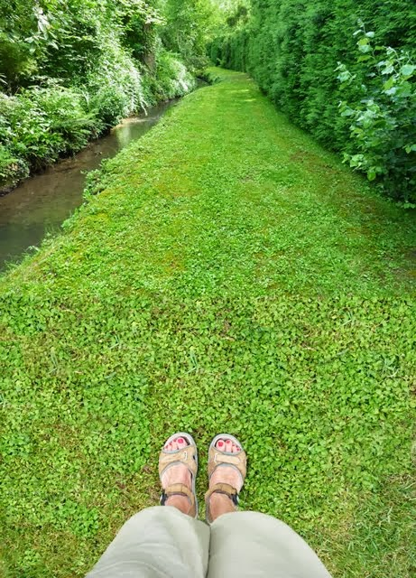 Le petit canal
