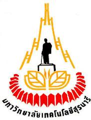 มหาวิทยาลัยเทคโนโลยีสุรนารี