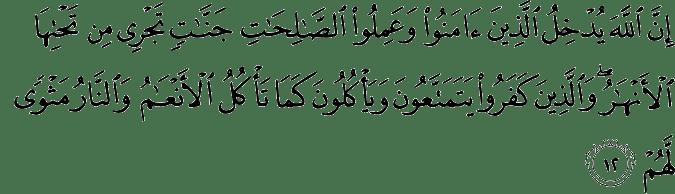 Bacaan Surat Yasin Arab Dan Latin Pdf Merger Letterlabel