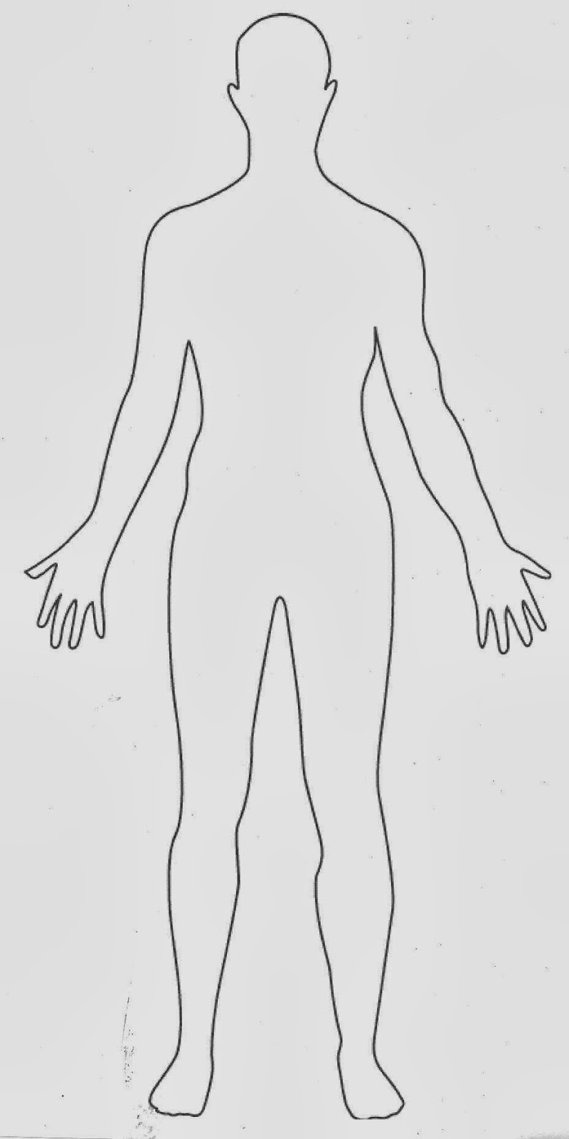 male human body outline front and back