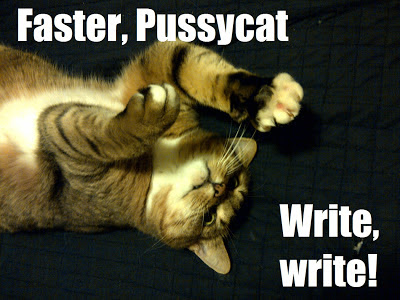 """Faster, Pussycat. Write, write!  © 2012 Laura Sheana Taylor. Pixel lays on her back, swiping at something above her. It looks like she's giving directions."