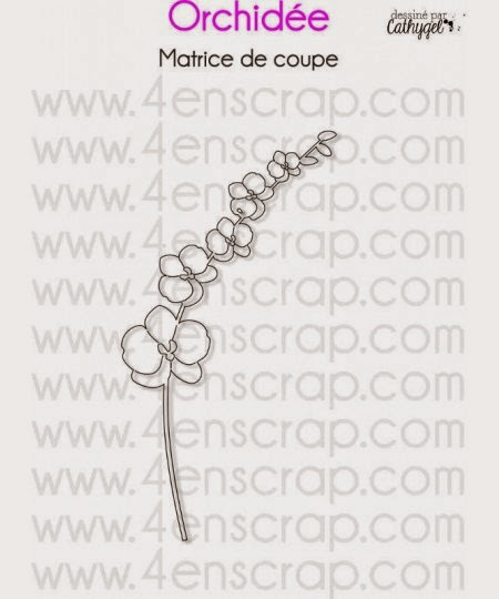 http://www.4enscrap.com/fr/les-matrices-de-coupe/456-orchidee.html?search_query=orchidee&results=2