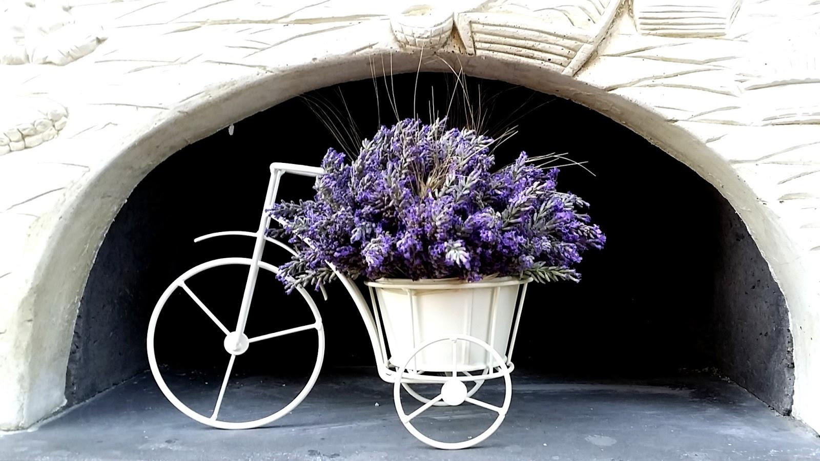 chariot avec lavande