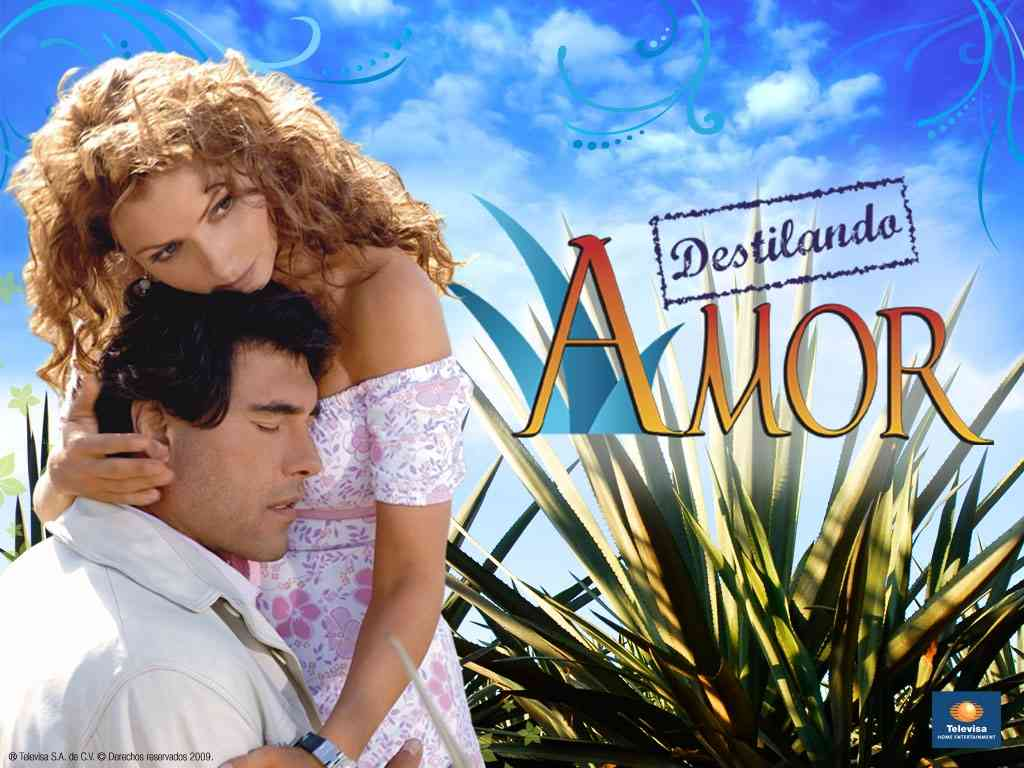 Comunicaci n virtual telenovelas mexicanas plagio for Espectaculos recientes de televisa