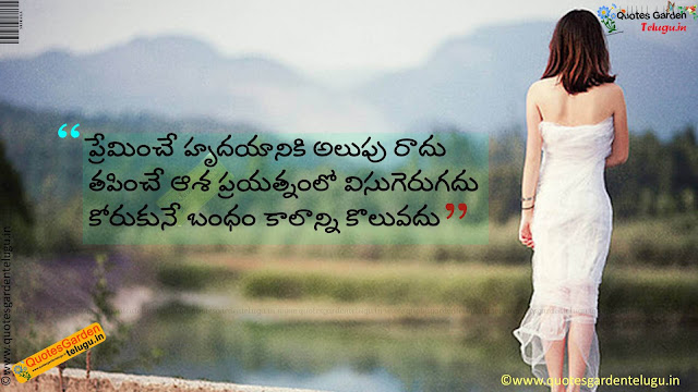 Heart touching love quotes in telugu 911