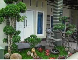 Tropical Landscape Ideas for Front Yard
