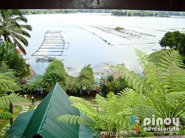 WHERE TO STAY IN LAKE SEBU - Punta Isla Lake Resort