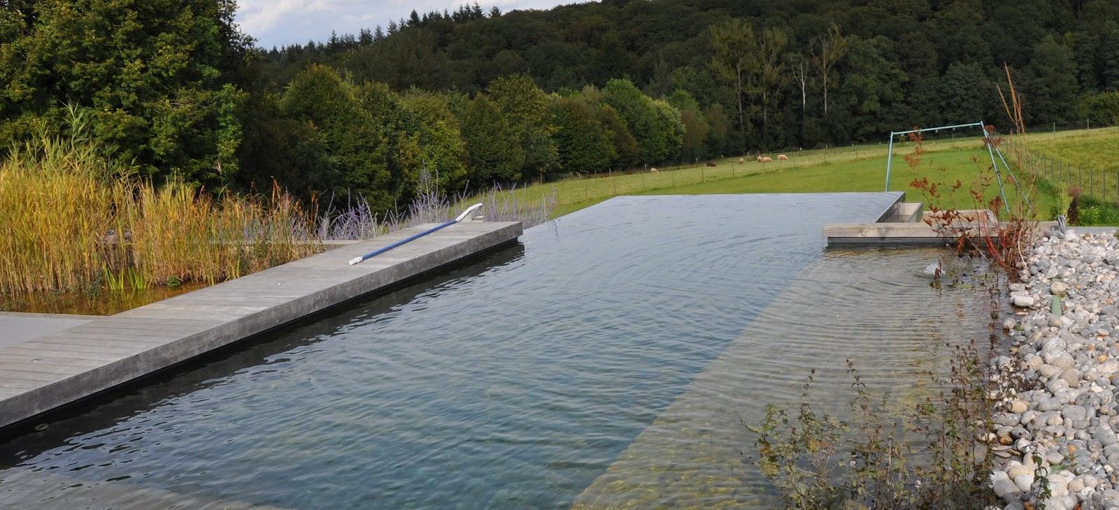 Baln aris baignades naturelles bioteich piscine for Piscine naturelle a debordement