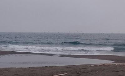 大規模鳥山