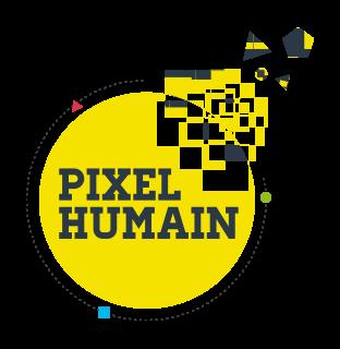 Pixel Humain