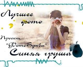 """проект """"Фото-Буквы - Ш"""""""