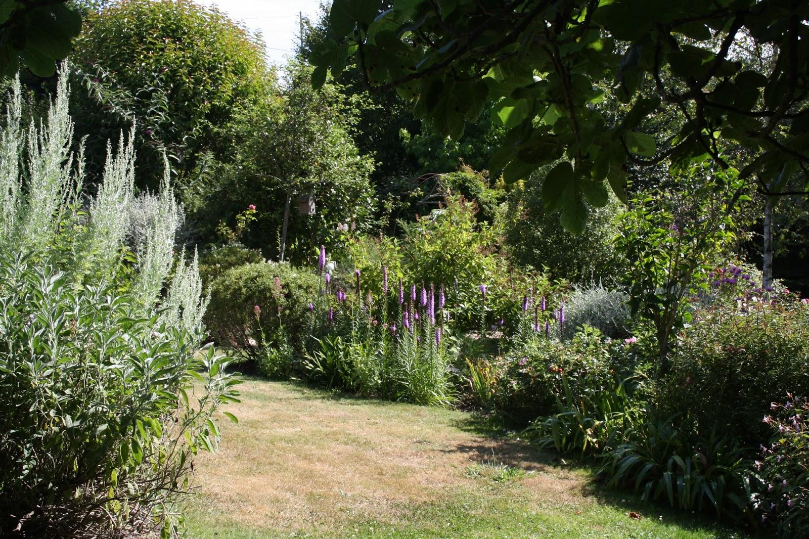 El jard n de margarita cosas del verano - Cosas del jardin ...
