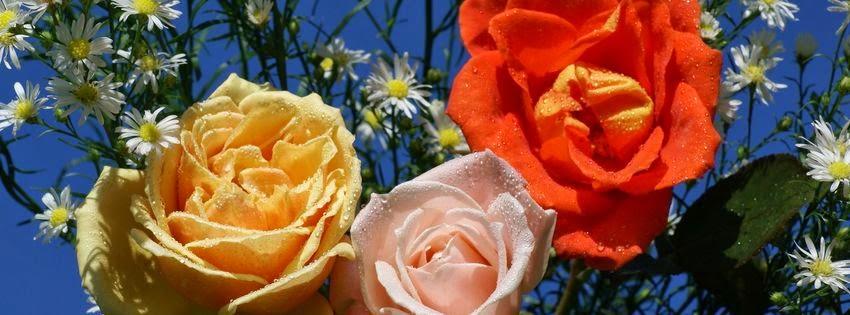 Belle tof de couverture facebook avec fleurs
