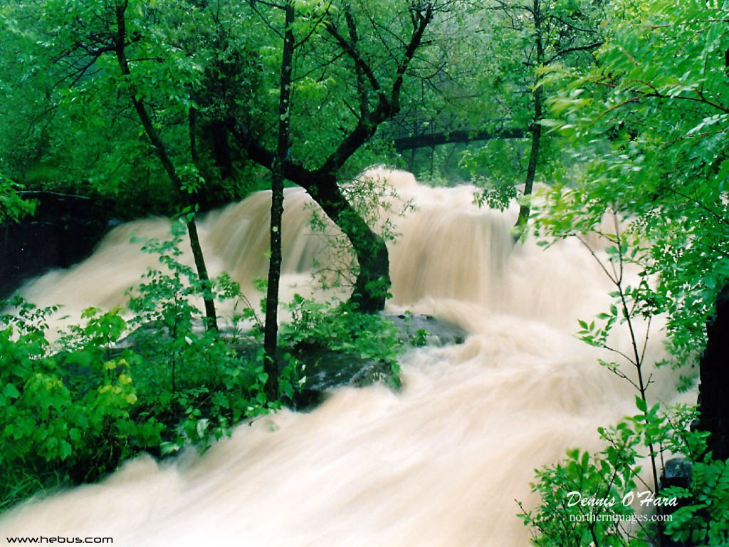 http://1.bp.blogspot.com/-tsSRGbKEkOw/TWEgo7L7f9I/AAAAAAAAAN0/uw6BNe7IIC4/s1600/Nature_Wallpapers-016.jpg