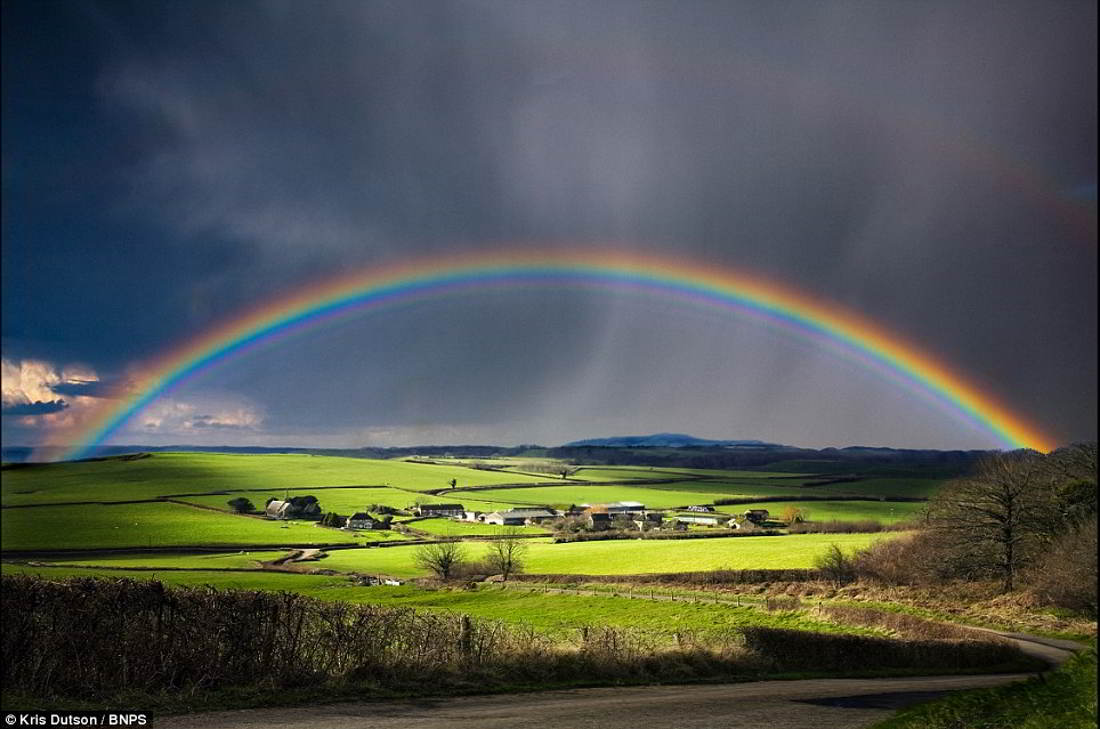 ADOP - A Drop Of Poison: How Is A Rainbow Formed?