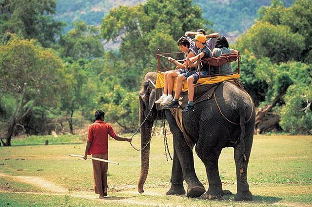 Why Go To Sri Lanka? - World Travel Family Travel Blog