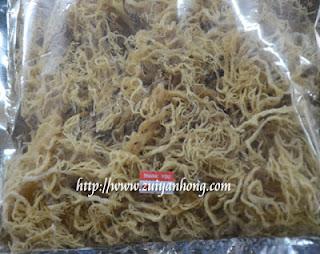 Sabah Seaweed