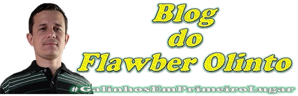 BLOG DO FLAWBER OLINTO