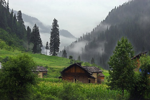 essay on scenic beauty of azad kashmir Kashmir land of paradise posted by in spring and summer seasons, the beauty of kashmir is at its peak neelum valley is one of the beautiful places of azad.