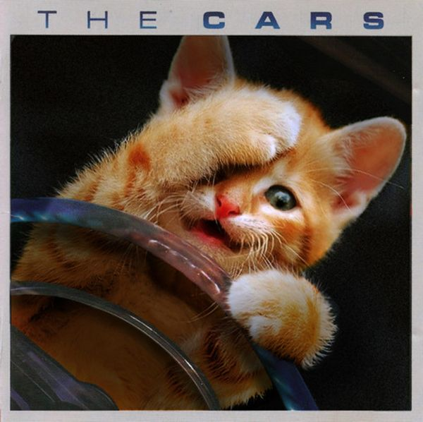 Kittens re-imagined album covers