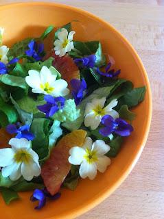 misticanza con violette, primule ed arance