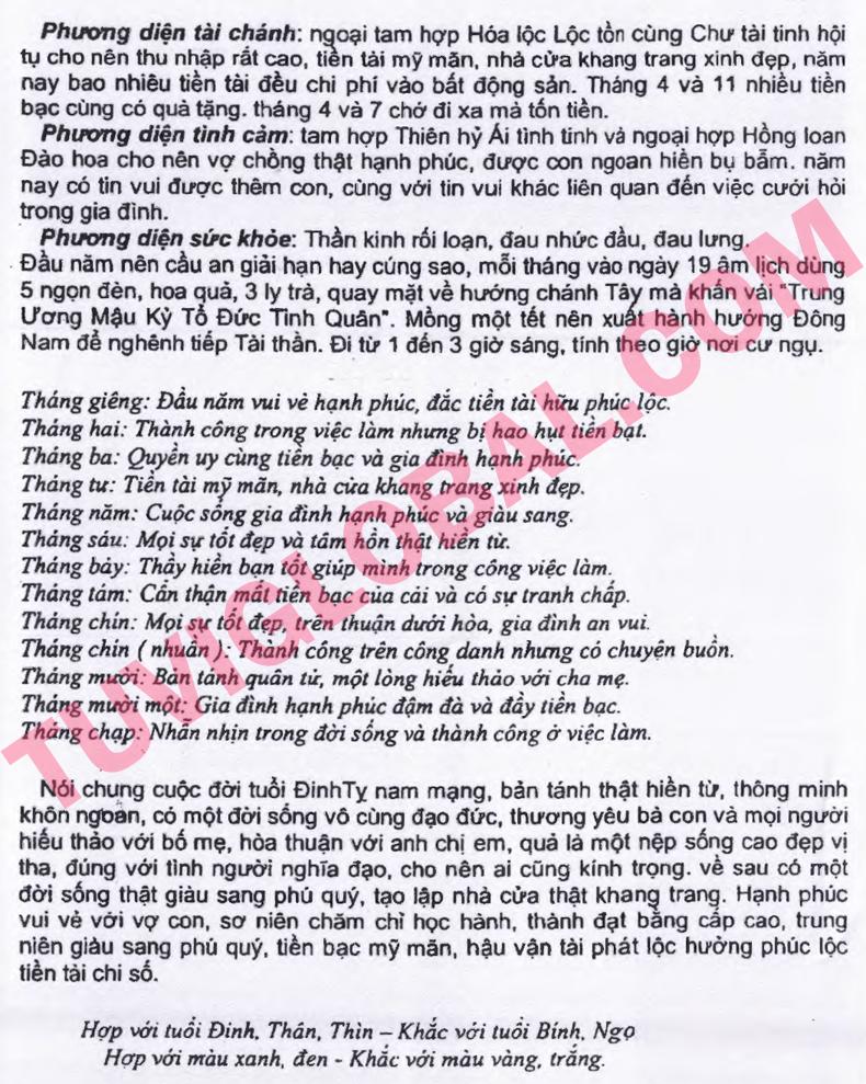 Xem tử vi tuổi Đinh Tỵ nam mạng năm 2014 Giáp Ngọ