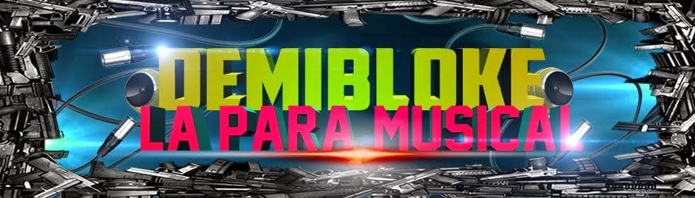 | DemiBloke.NeT - La Para Musical