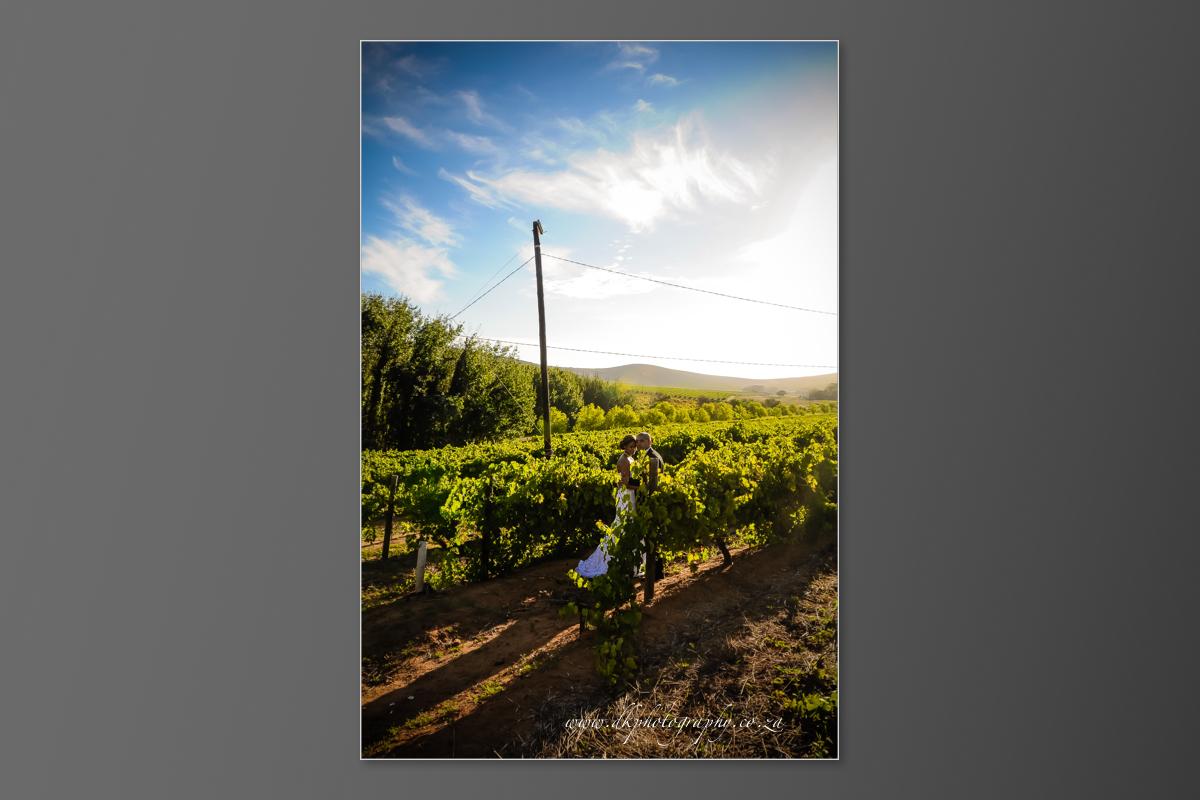 DK Photography DVD+slideshow-346 Cleo & Heinrich's Wedding in D'Aria, Durbanville  Cape Town Wedding photographer