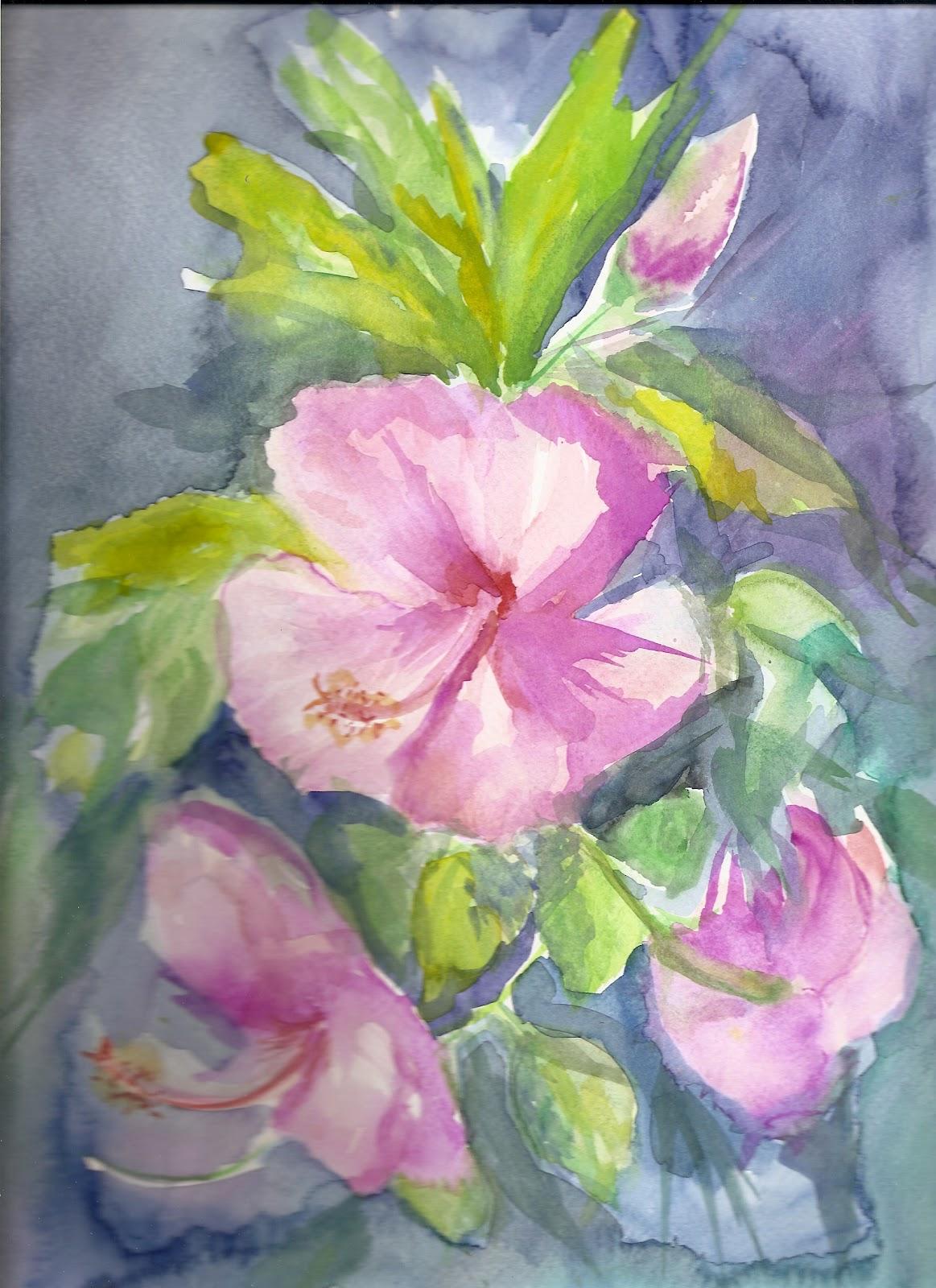 La magia del color rosa china o hibiscus - Rosas chinas ...