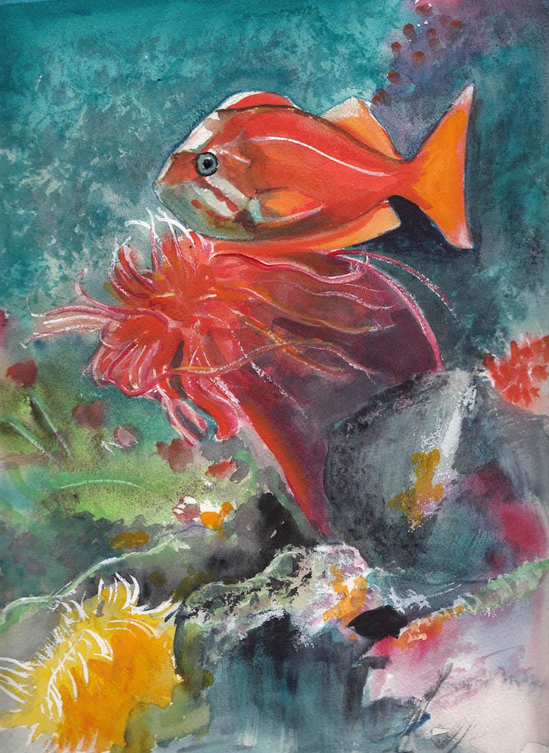 Bunny 39 s artwork orange fish underwater scene original for Watercolor fish painting