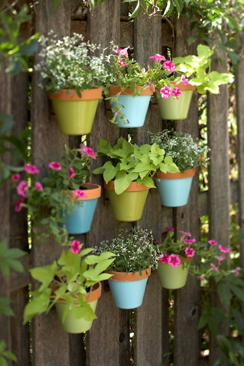 Laura Carpenter Art: Inspiration: Container Gardening