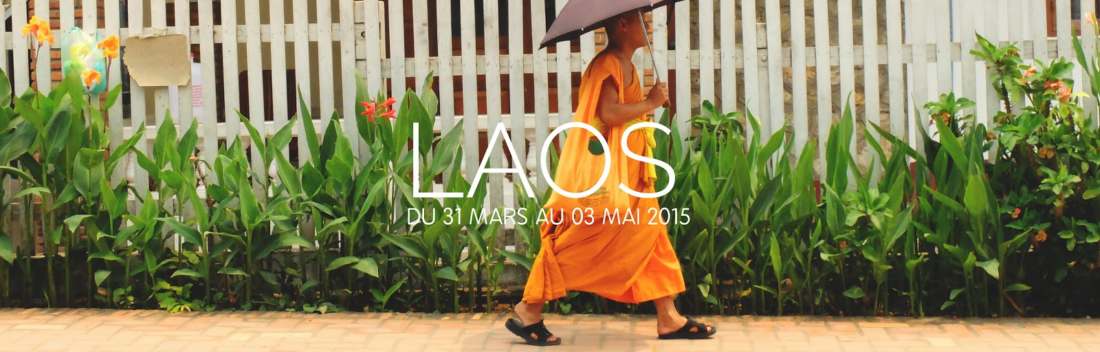 http://andiamopepito.blogspot.com/search/label/Laos