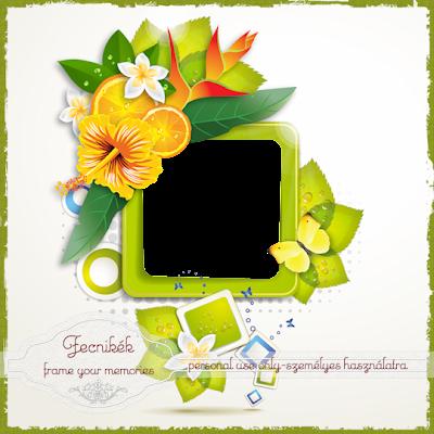 http://1.bp.blogspot.com/-tug_VacGZJo/VC_aGtmYfaI/AAAAAAAAIP8/iggdlrXvmz0/s400/hibiscus%2Bfecnikek.png