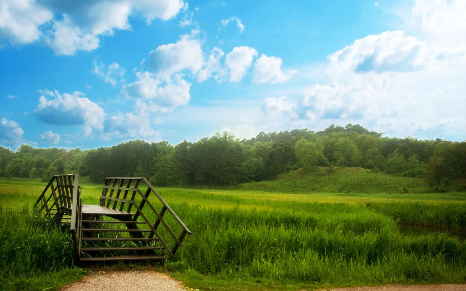 pemandangan kampung, sawah padi kampung, gambar orang kampung