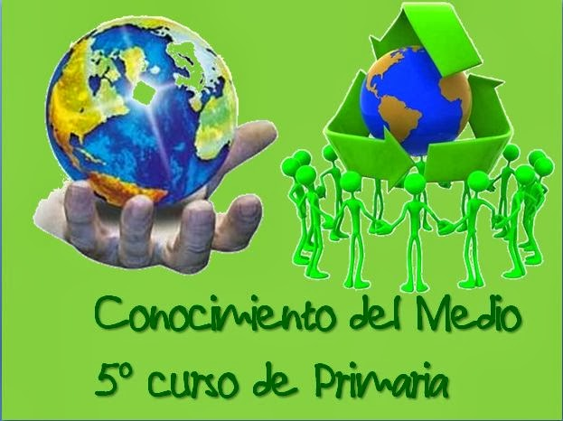 Cono 5º de E. Primaria