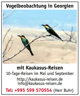 Vogelbeobachtung