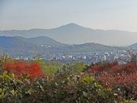 天気は良く比叡山と双ヶ丘がみえた。