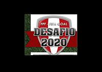 COPA FEDERACION REGIONAL DESAFIO 2020