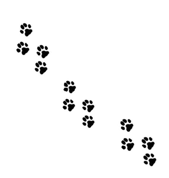 Patitas de perros para colorear - Imagui
