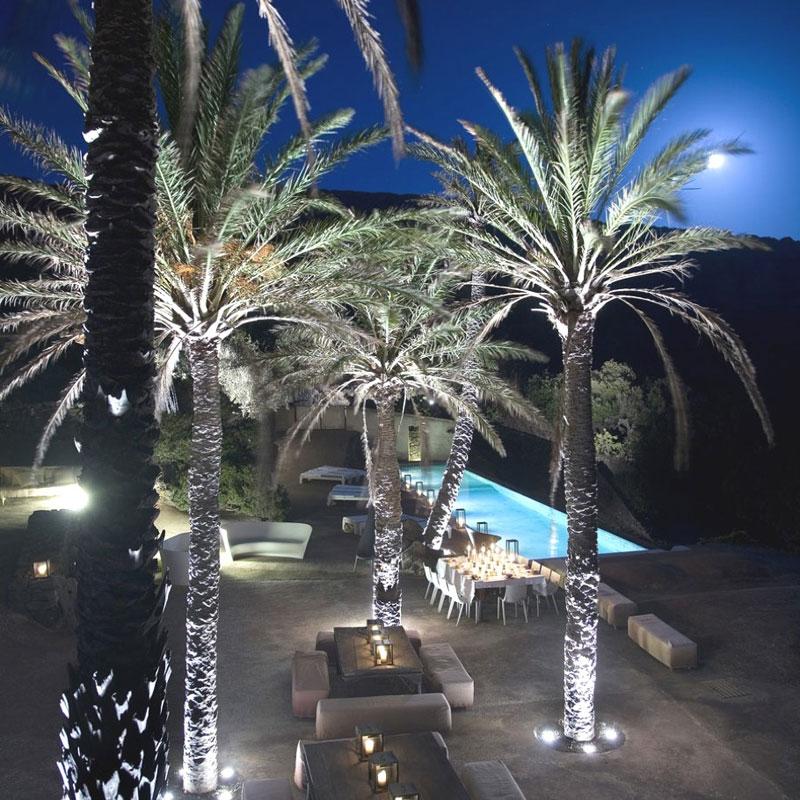 Una finca agr cola repleta de dise o en un evocador oasis for Iluminacion para palmeras