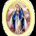 Hân Hoan Mừng Lễ Đức Mẹ Vô Nhiễm Nguyên Tội