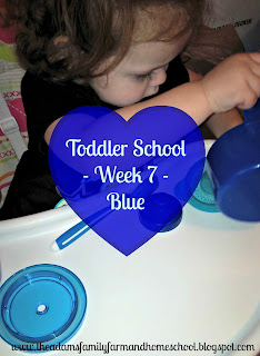 Toddler School - Learning the color blue